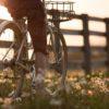 Miks sõita jalgrattaga?