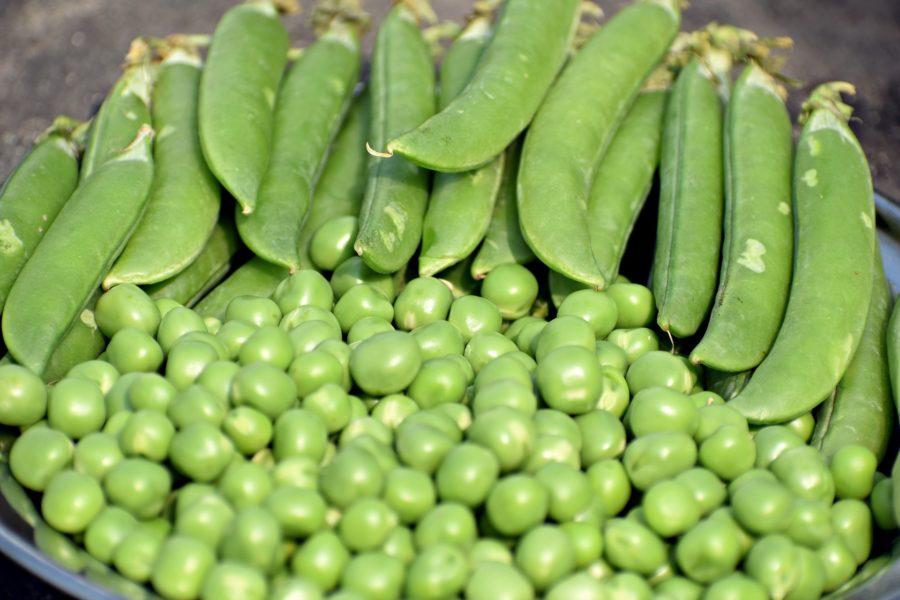 Kuidas täisterast, kaunviljast ja pähklitest veelgi rohkem kasu saada?